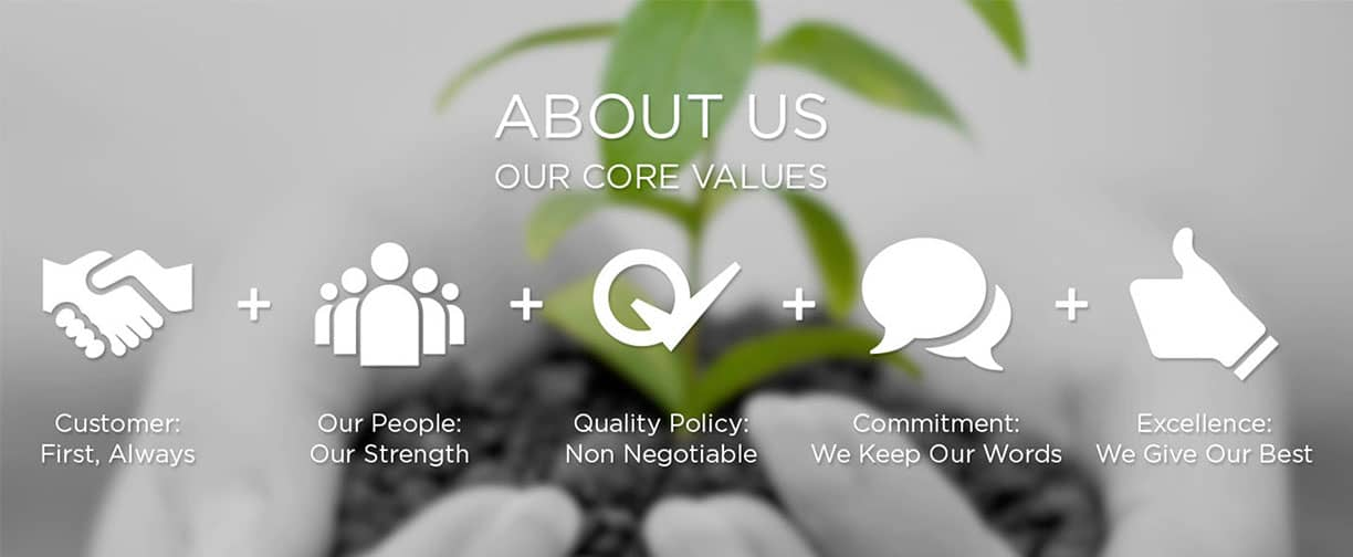 About Our Values