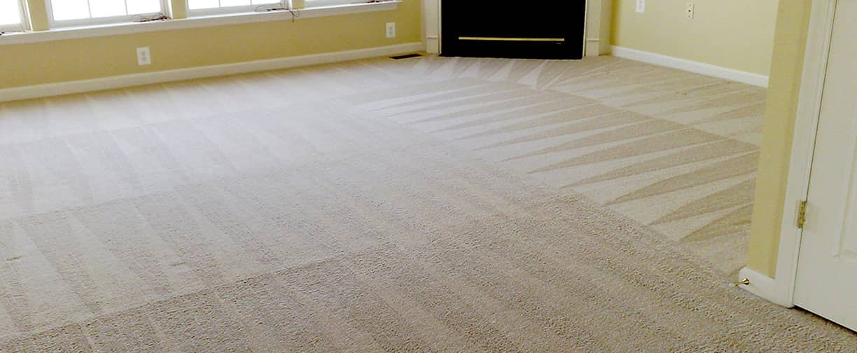 Etobicoke Upholstery Cleaning Services, Carpet Cleaning Company and Carpet Cleaning Services